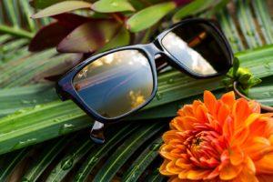 Solare Sunglasses
