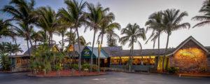 Dolphin Bar and Shrimp House