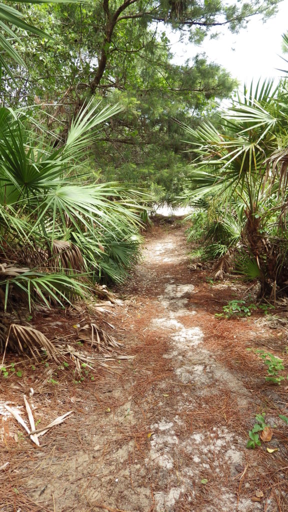 Hobe Sound Nature Center