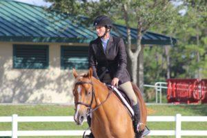 McNally Show Horses