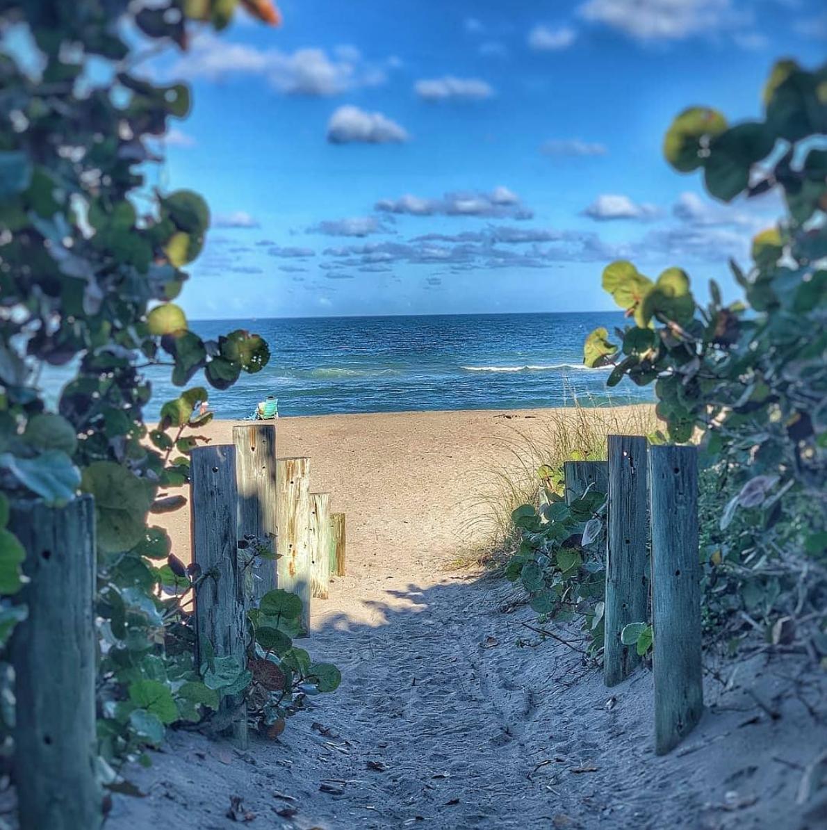 Stuart Beach/Seaside Café Image