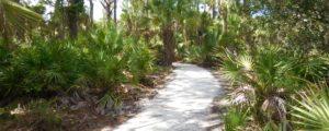 Gomez Preserve Nature Trail