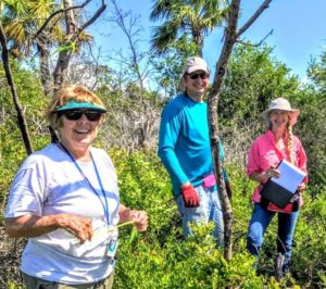 Four-Petal PawPaw Talk by Dr. Anne Cox Presented by the Martin County Chapter of the FL Native Plant Society